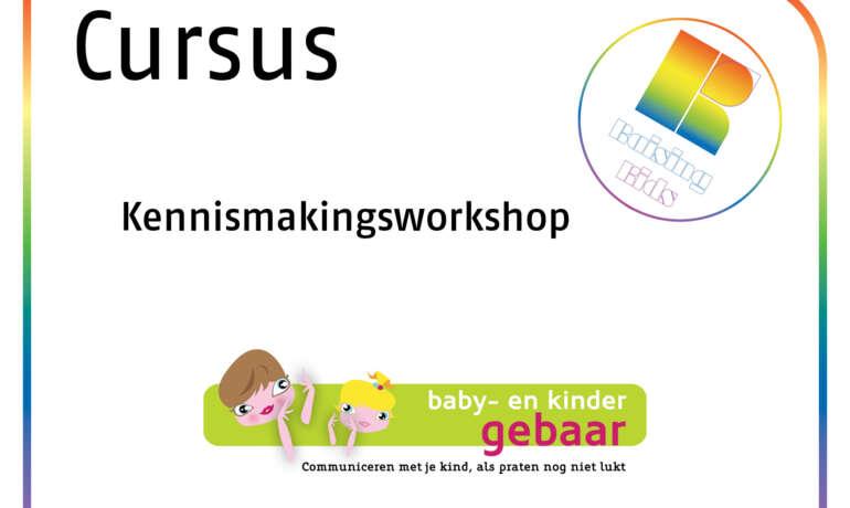 Kennismakingsworkshop babygebaren