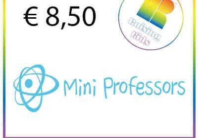 Ticket Mini Professors